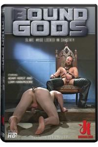BOUND GODS : SLAVE 860 LOCKED IN CHASTITY